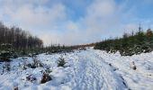 Trail Walk Sainte-Ode - rando lavacherie 29/12/2020 - Photo 28