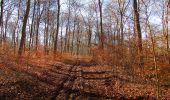 Trail Walk PIERREFONDS - en forêt de Compiègne_24_Tournantes sur le Voliard et sur la Fortelle_chaussée Brunehaut - Photo 36