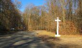 Trail Walk PIERREFONDS - en forêt de Compiègne_24_Tournantes sur le Voliard et sur la Fortelle_chaussée Brunehaut - Photo 76