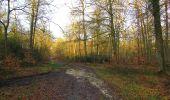 Trail On foot VIEUX-MOULIN - en forêt de Compiègne_23_la Grotte des Ramoneurs_le Mont Berny - Photo 121