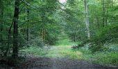 Trail Walk DAMPLEUX - en forêt de Retz_80_sur la Route Tortue et la Route Droite - Photo 32