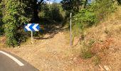 Randonnée Marche BARGEMON - Le bois de ciste - Photo 8