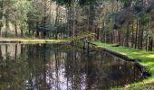 Trail Walk CHAGEY - 70 Chagey le menhir - Photo 4