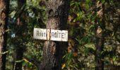 Trail Walk LONGPONT - en forêt de Retz_29_Longpont_la cave du Diable_A - Photo 30