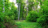 Randonnée Marche COYOLLES - en forêt de Retz_78_les rayons du Rond Capitaine - Photo 78