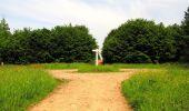 Trail Walk COYOLLES - en forêt de Retz_78_les rayons du Rond Capitaine - Photo 112