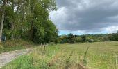 Randonnée Marche Profondeville - Sept Meuse Profondeville  21,4 km - Photo 8