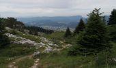 Trail Walk LANS-EN-VERCORS - Pic Saint-Michel et col d'Arc Vercors - Photo 11