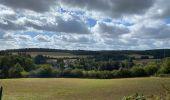 Randonnée Marche Profondeville - Sept Meuse Profondeville  21,4 km - Photo 6