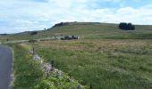 Trail Walk NASBINALS - .nasbinals  - Photo 4