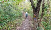 Trail Walk SAINT-PLANTAIRE - le rocher de la fileuse - Photo 7