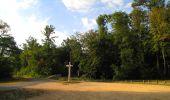 Randonnée Marche LACROIX-SAINT-OUEN - en forêt de Compiègne_35_la Croix Saint-Sauveur_le Ru du Goderu - Photo 91