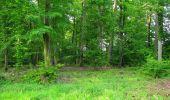 Randonnée Marche COYOLLES - en forêt de Retz_78_les rayons du Rond Capitaine - Photo 97