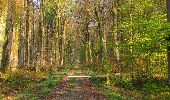 Randonnée Marche LONGPONT - en forêt de Retz_77_Longpont_Puiseux en Retz_AR - Photo 144