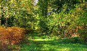 Randonnée Marche SAINT-JEAN-AUX-BOIS - en forêt de Compiègne_21_la Muette_les Clavières_la Brévière - Photo 90