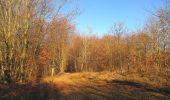 Trail Walk PIERREFONDS - en forêt de Compiègne_24_Tournantes sur le Voliard et sur la Fortelle_chaussée Brunehaut - Photo 114