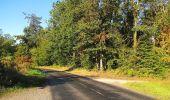 Trail Walk DAMPLEUX - en forêt de Retz_80_sur la Route Tortue et la Route Droite - Photo 77