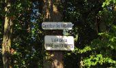 Trail Walk DAMPLEUX - en forêt de Retz_80_sur la Route Tortue et la Route Droite - Photo 74