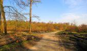 Randonnée Marche LONGPONT - en forêt de Retz_77_Longpont_Puiseux en Retz_AR - Photo 95