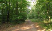 Randonnée Marche LACROIX-SAINT-OUEN - en forêt de Compiègne_35_la Croix Saint-Sauveur_le Ru du Goderu - Photo 77