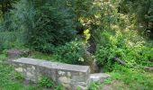 Randonnée Marche LACROIX-SAINT-OUEN - en forêt de Compiègne_35_la Croix Saint-Sauveur_le Ru du Goderu - Photo 35