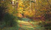 Trail Walk SAINT-JEAN-AUX-BOIS - en forêt de Compiègne_19_le Puits d'Antin_les Mares St-Louis_La Muette - Photo 182