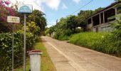 Trail Walk RIVIERE-SALEE - JOUBADIÈRE - MORNE CONSTANT - PAGERIE - Photo 12