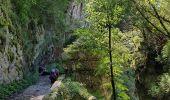 Randonnée Marche ROVON - Pied Aigu - Photo 8