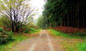 Randonnée A pied VILLERS-COTTERETS - le GR11A  dans la Forêt de Retz  - Photo 126