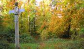 Randonnée Marche SAINT-JEAN-AUX-BOIS - en forêt de Compiègne_32_11_2019_les Tournantes de la Muette et sous la Tête Saint-Jean - Photo 161