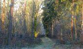 Trail Walk SAINT-JEAN-AUX-BOIS - en forêt de Compiègne_33_12_2019_les Tournantes de l'étang Saint-Jean et des Prés Saint-Jean - Photo 141