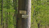 Randonnée Marche LONGPONT - en forêt de Retz_77_Longpont_Puiseux en Retz_AR - Photo 70