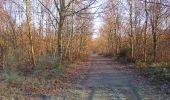 Trail Walk SAINT-JEAN-AUX-BOIS - en forêt de Compiègne_33_12_2019_les Tournantes de l'étang Saint-Jean et des Prés Saint-Jean - Photo 93