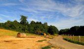 Randonnée Marche HARAMONT - en forêt de Retz_79_08_2019_vers Taillefontaine et Retheuil par les lisières - Photo 39