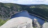 Trail Walk ORBEY - Tour de lac Noir et du Lac Blanc  - Photo 23