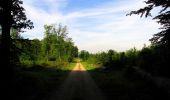 Randonnée Marche COYOLLES - en forêt de Retz_78_les rayons du Rond Capitaine - Photo 73