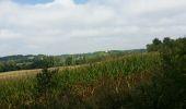Trail Walk MONFLANQUIN - La balade de Monflanquin  - Photo 1