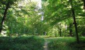 Trail Walk DAMPLEUX - en forêt de Retz_80_sur la Route Tortue et la Route Droite - Photo 169