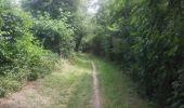 Trail Walk Gesves - 20190701 Strud - Photo 9