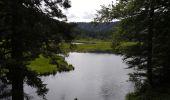 Trail Walk LA BRESSE - Lac de Lispach - Photo 6