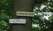 Randonnée Marche COYOLLES - en forêt de Retz_78_les rayons du Rond Capitaine - Photo 2