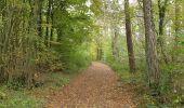 Trail Walk Viroinval - De Nismes à Petigny par le Tienne du Lion - Photo 8