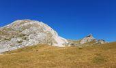 Randonnée Marche SAINT-AGNAN-EN-VERCORS - Pas des chatons  depuis la coche - Photo 1