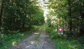 Trail Walk DAMPLEUX - en forêt de Retz_80_sur la Route Tortue et la Route Droite - Photo 259