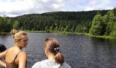 Trail Walk LA BRESSE - Lac de Lispach - Photo 3