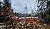 Trail Walk Sainte-Ode - rando lavacherie 29/12/2020 - Photo 16
