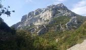 Trail Ropes DUILHAC-SOUS-PEYREPERTUSE - Cathare 4 Duilhac sous P.  Bugarach - Photo 2