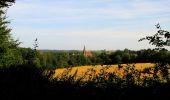 Randonnée Marche HARAMONT - en forêt de Retz_79_08_2019_vers Taillefontaine et Retheuil par les lisières - Photo 50