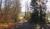 Trail Walk SAINT-JEAN-AUX-BOIS - en forêt de Compiègne_33_12_2019_les Tournantes de l'étang Saint-Jean et des Prés Saint-Jean - Photo 205