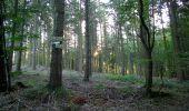 Trail Walk DAMPLEUX - en forêt de Retz_80_sur la Route Tortue et la Route Droite - Photo 28